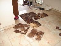 建物調査-床下浸水
