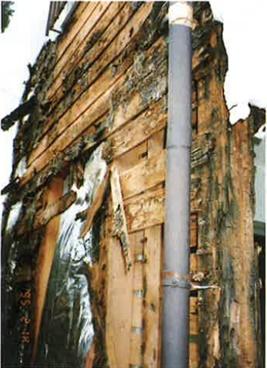 外壁のひび割れより水が浸入し、柱・下地が腐食し倒壊の原因となった